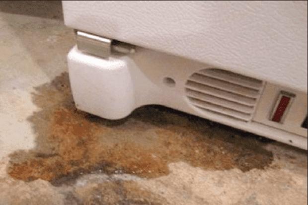Đáy tủ lạnh rò rỉ nước